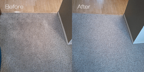 Carpet Cleaning Service Cleanmaster Dumfries